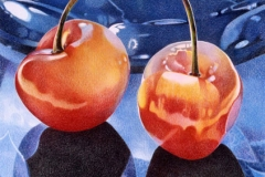 1995RainierCherries21.75x16
